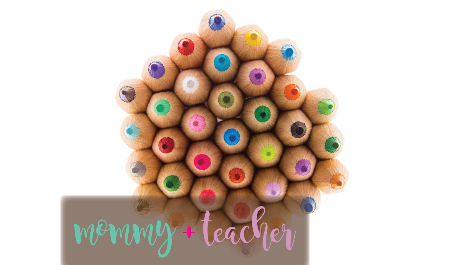 teacher_vive